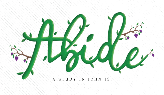 Abide Sermon Series - art - fruit of the spirit