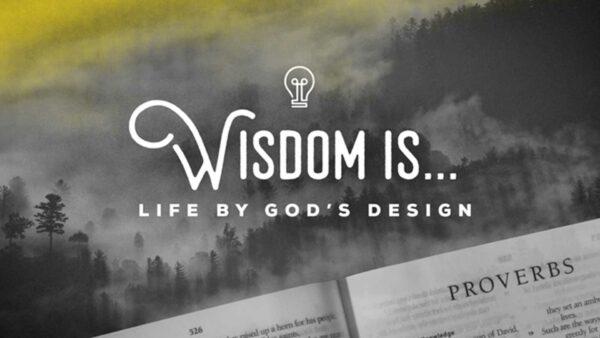 Wisdom Is...